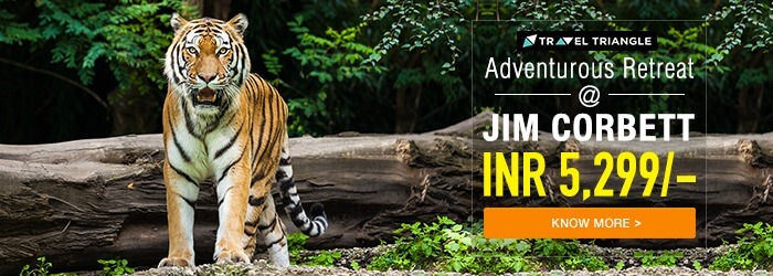 Jim Corbett getaway trip 2 at INR 5,299 only
