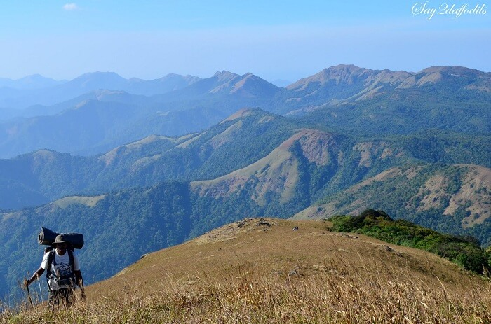 The famous hill trek amongst Munnar trekking