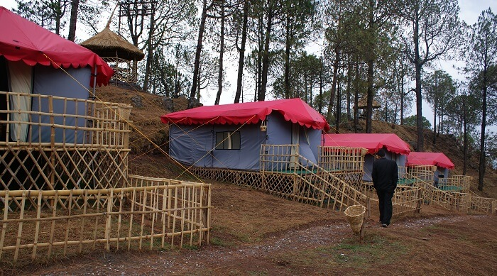 The many camp huts at the Sanawar Nature Camp at Kasauli