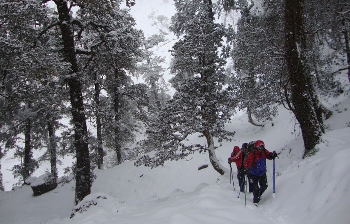 Trekkers make the ascend on the Kuari Pass winter trek