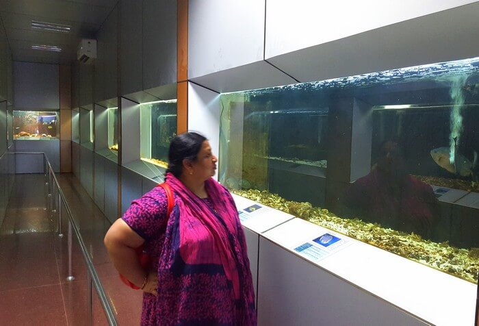 Mohan's wife at the Marine Museum