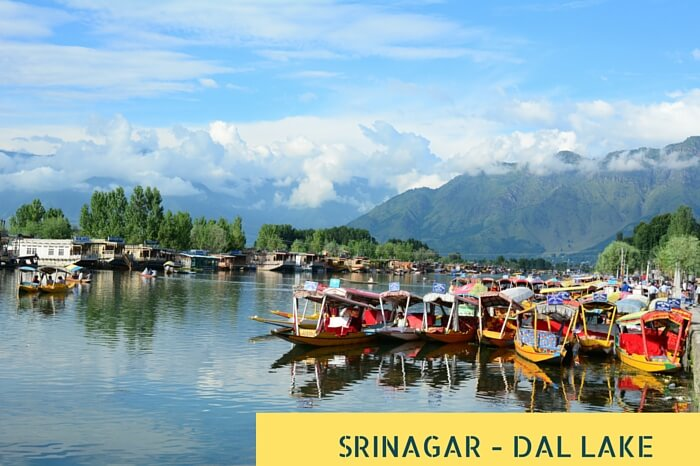 Many Shikaras waiting tourists on Dal lake at Srinagar
