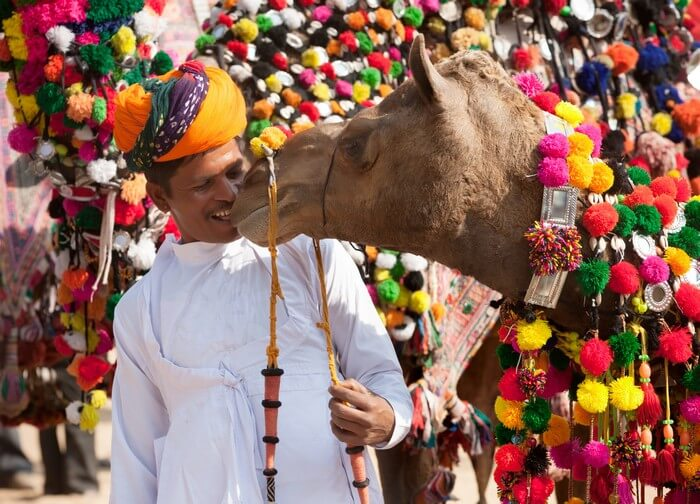 A man playing with his camel during the cattle fair of Pushkar