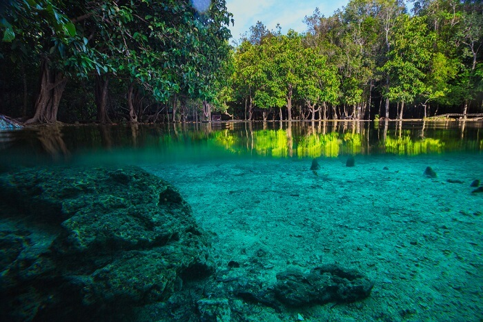The mesmerizing Emerald Pool of Thung Teao Forest Natural Park is one of the best places to visit in Krabi