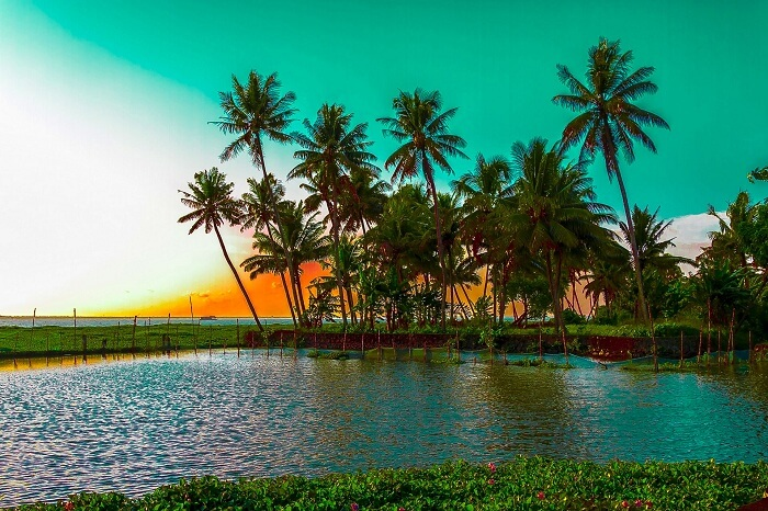 Kumarakom Lake is a stunning glimpse into the beauty of Kumarakom