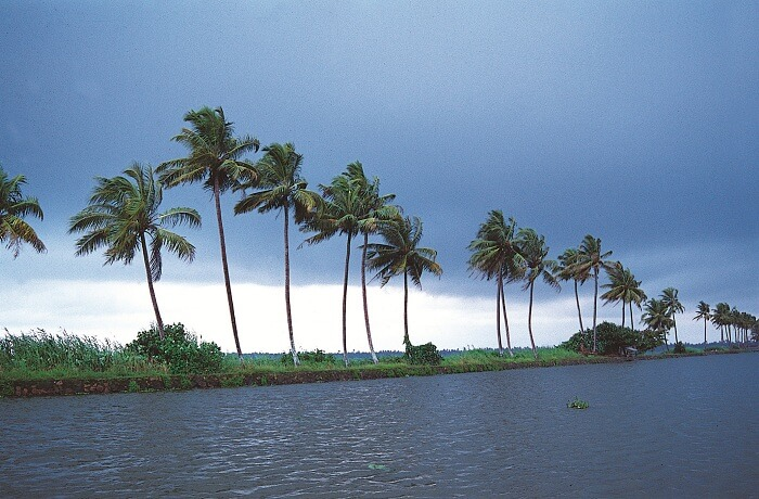 The pristine beauty of Kumarakom Backwaters has proven to be therapeutic to many