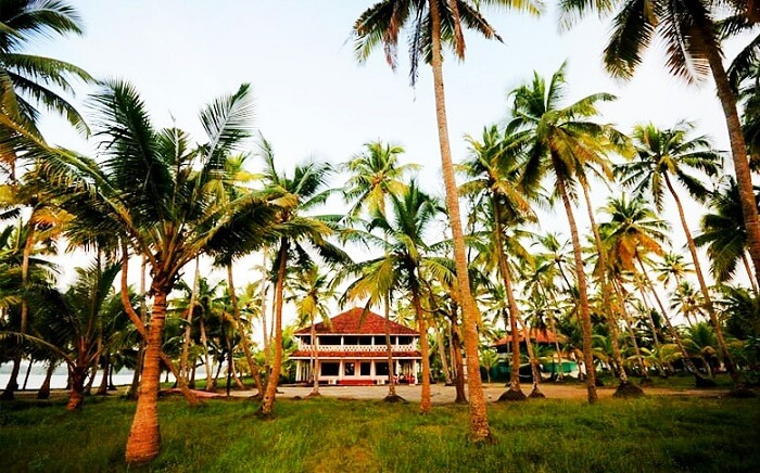 Michaels Land Resort - one of the most secluded resorts in Cochin - is set amidst tall coconut trees