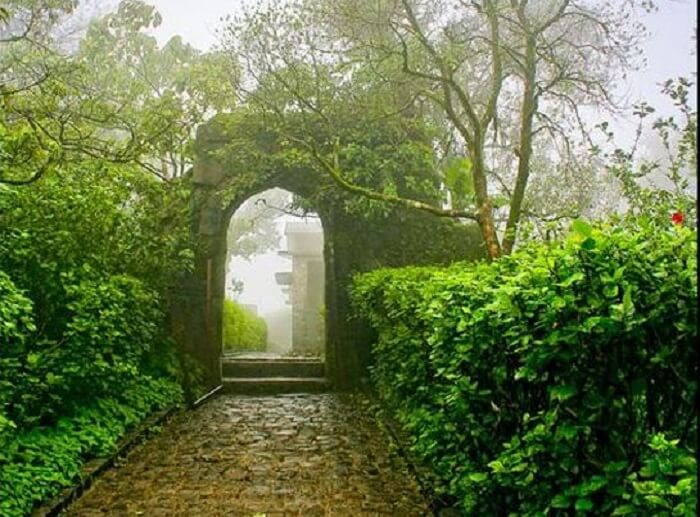 A beautiful alleyway amidst the lush greenery at Sinhagad Fort in Pune