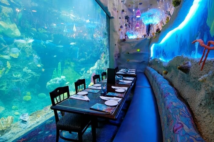 Another view of the dining with the aquarium surrounding it