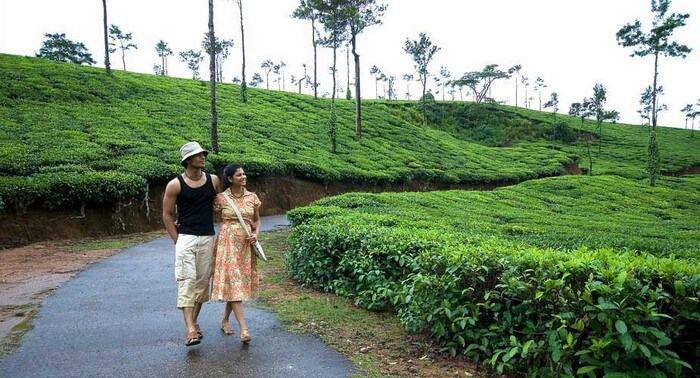Couple enjoying views of lush valleys in Coorg