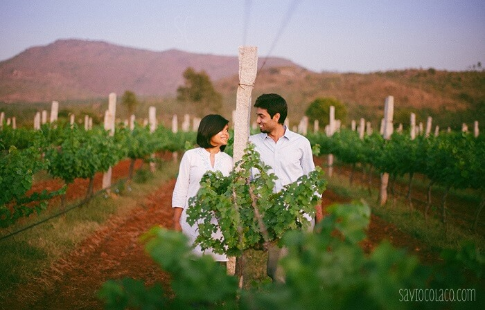stroll with your lover at grover vineyard, one of the most romantic places in bangalore