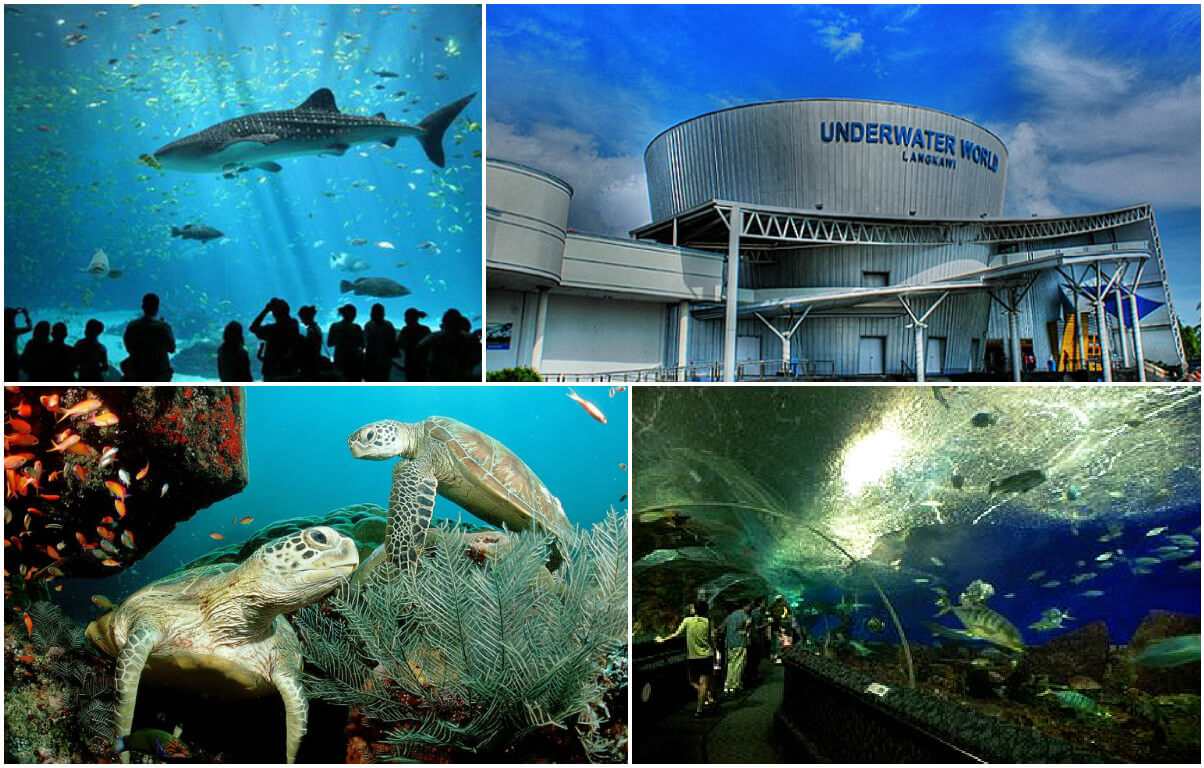 Scenes from inside and outside the Underwater World in Langkawi