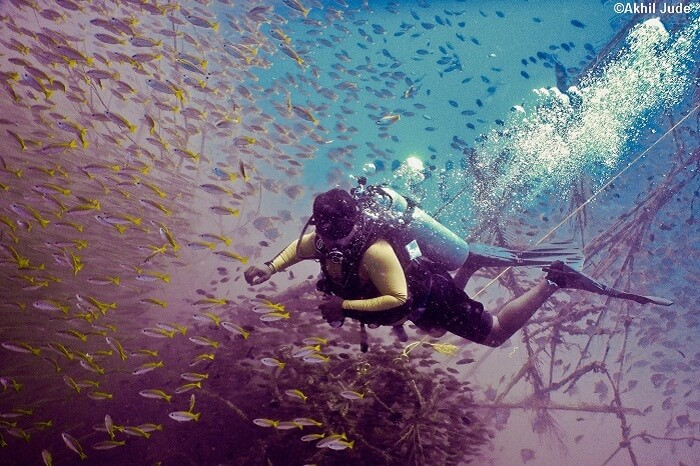 A person undertakes scuba diving through the natural coral reefs at Pondicherry