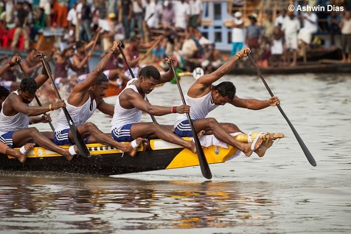 Snake boats with crews of upto 100 people race for the annual Nehru Trophy in Kerala