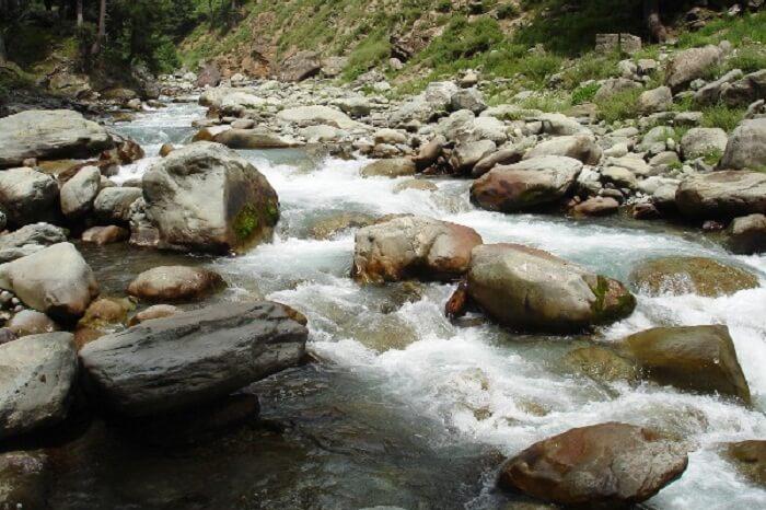 The gushing streams flowing through the Ferozepur Nallah
