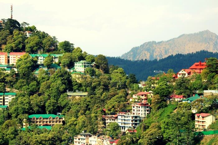 The lush hills of Mashobra near Shimla