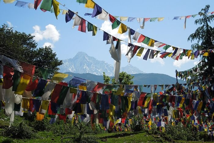 A shot of the prayer flags on the Kora Circuit