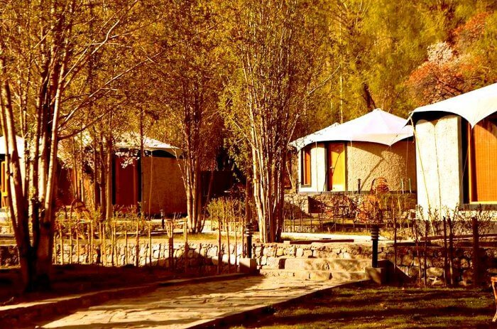 Beautiful cottages in Nubra Valley
