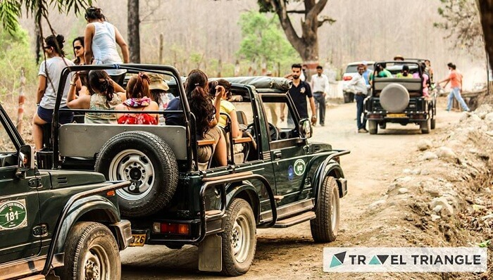 Girls on a jungle safari in Jim Corbett