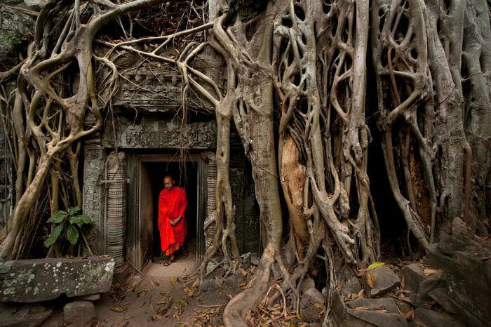 A monk inside the famous Ta Prohm temple of Cambodia