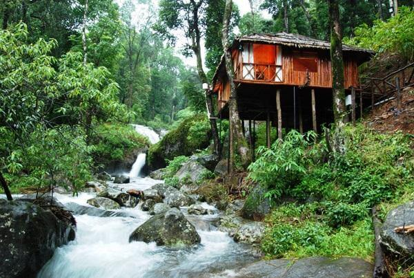 Monsoons are best experienced at the Blue Ginger Resort in Wayanad