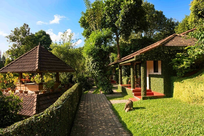 Beautiful alleyway leading to stunning Cardamom County - One of the best premium resorts in Thekkady