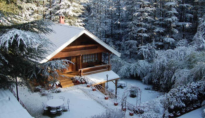 Cottage beautifully covered in snow at The Chalets Naldehra in Himachal