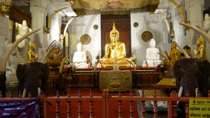 Enchanting Tooth Temple in Kandy