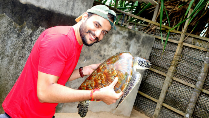 Meeting with Turtles in Bentota
