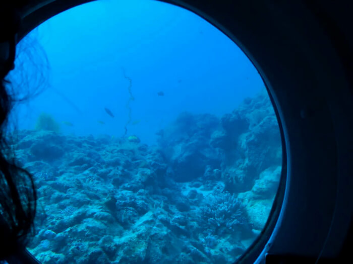 View of the ocean from the submarine in Mauritius