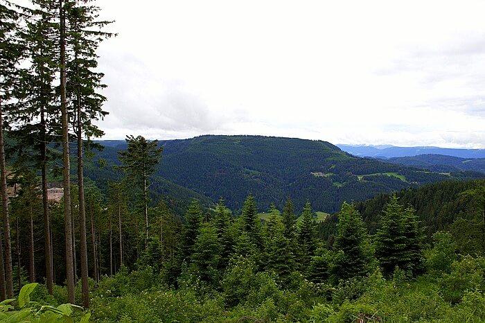 Scenic view of Baden Baden