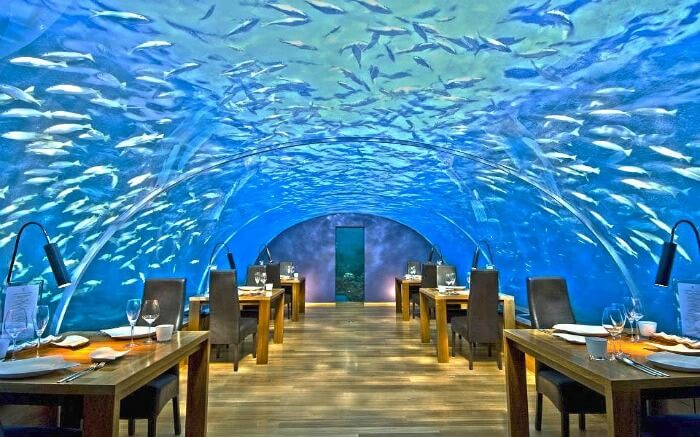 The underwater dining experience in Maldives
