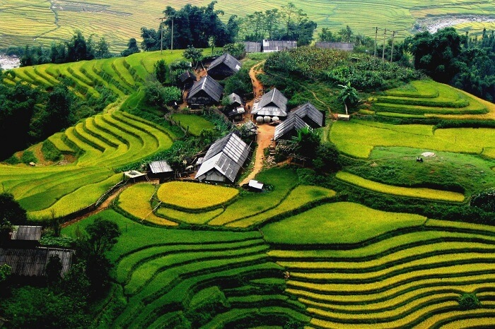 An aerial view of the lush Sa Pa valley in Vietnam