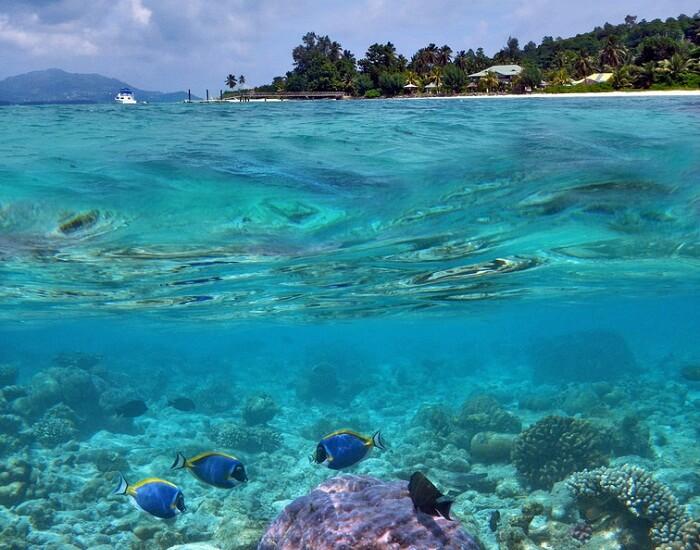 Seychelles Sightseeing dlrZBJ