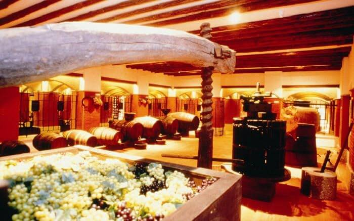 Taste the best wines here