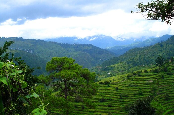 The pristine valley of Ranikhet washed in the rains