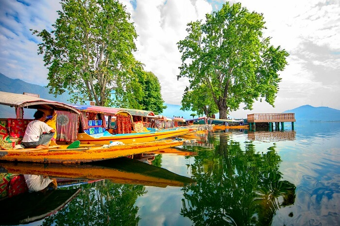 Numerous shikaras ready to take tourists for a ride in Dal Lake