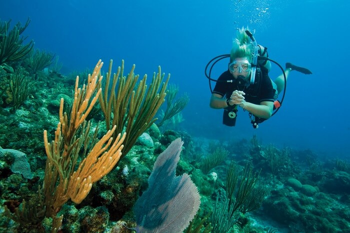 Snorkeling and scuba diving are some adventurous things to do in Pattaya
