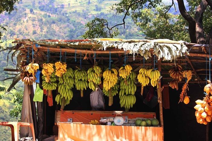 Tasty bananas of Sri Lanka