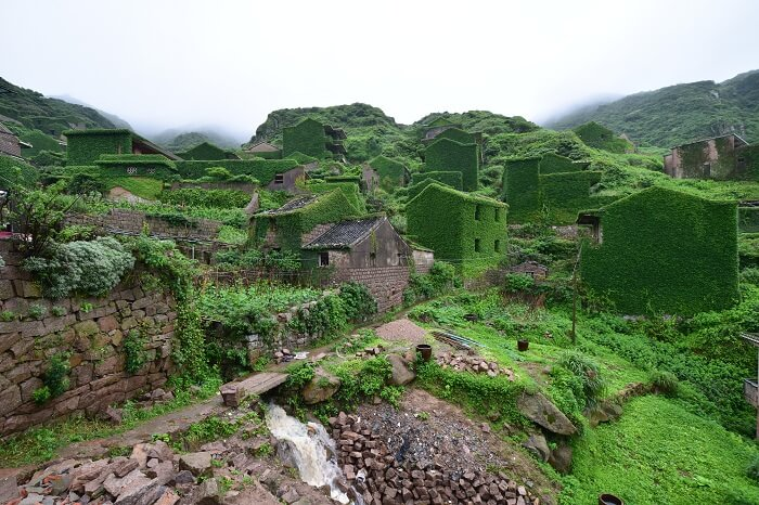 An abandoned Chinese village overgrown with vegetation on the small Chinese island of Gouqi off the coast of Shanghai