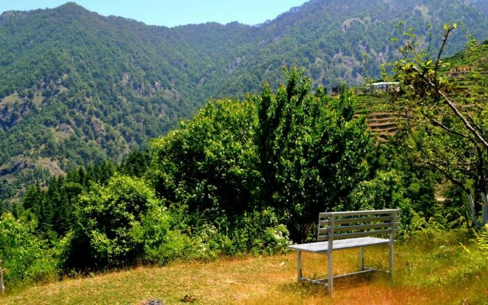 A bench placed to enjoy Dhanaulti view