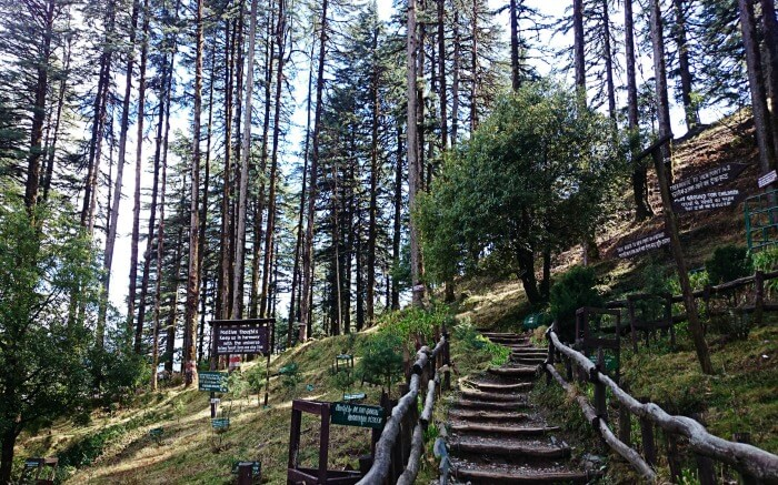 The picturesque Eco Park in Dhanaulti