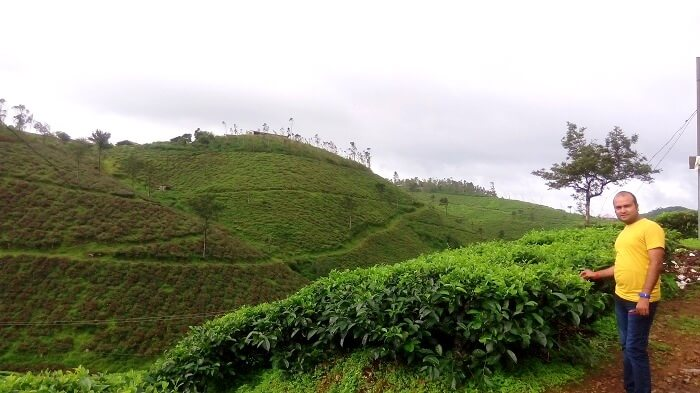 Exploring the tea garden in Munnar