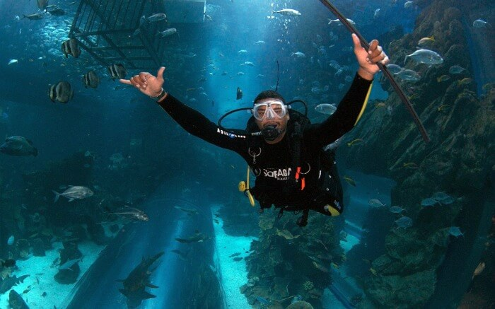 Night diving in Dubai