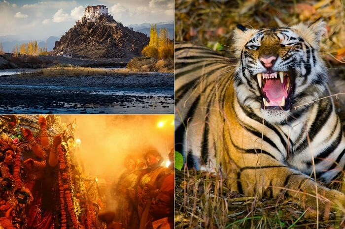 Three of the most famous places to visit in India in October