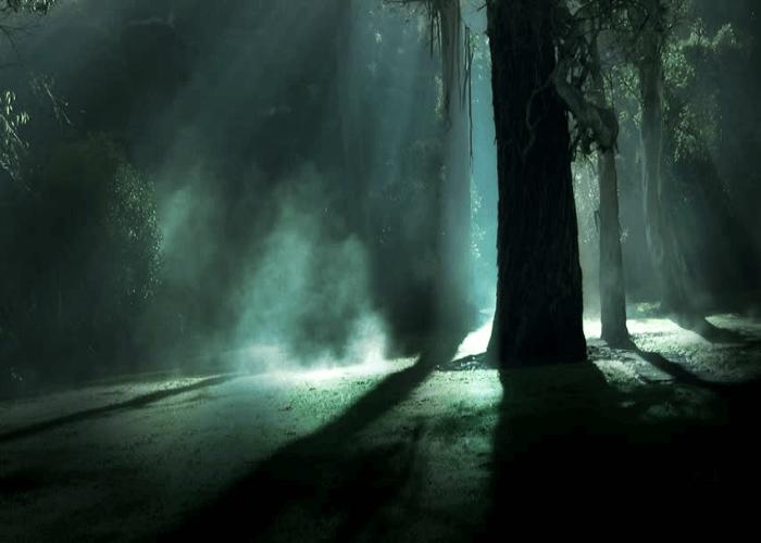 Eerie Park