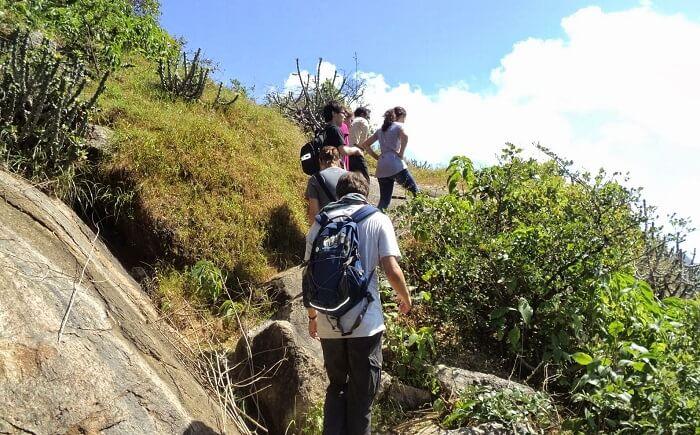 Tourists indulging in trekking in Rajasthan