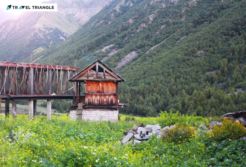 Beautiful nature in Himachal