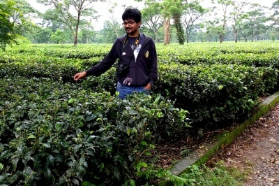 Rahul wandering in Tea Plantations
