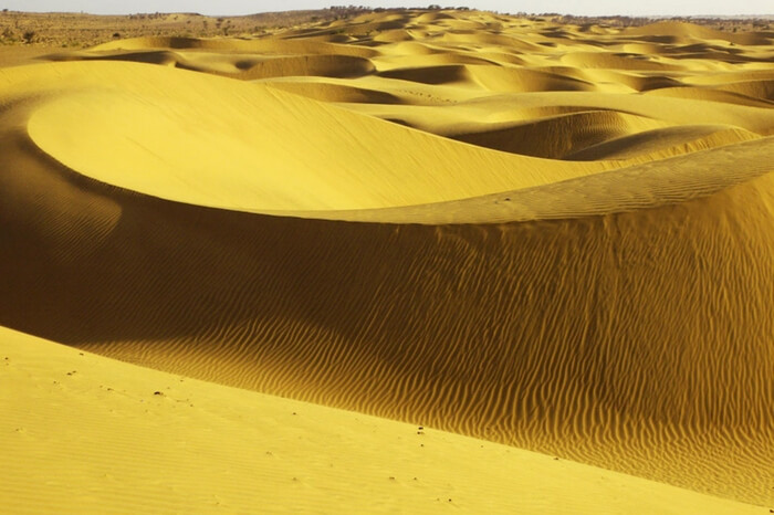 A close view of Sam Sand Dunes in Jaisalmer